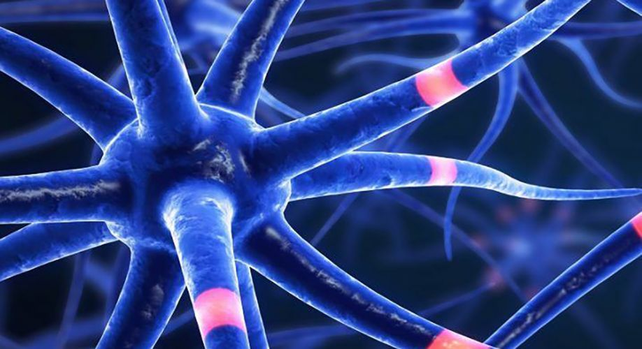 Multiple Sclerosis Treatment