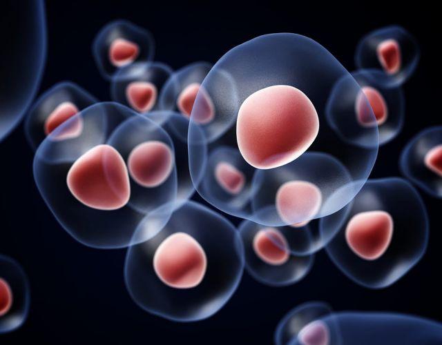 Scleroderma Treatment